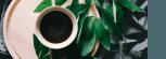 Нейминг, слоган, логотип и упаковка Pianeta
